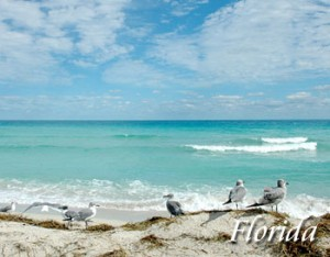 Florida Vacations FL  Hotel Deals